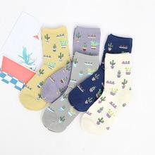 Foot 22 25cm Cacti font b Socks b font Fashion Daily Plant Ball Cactus Harajuku Lilac