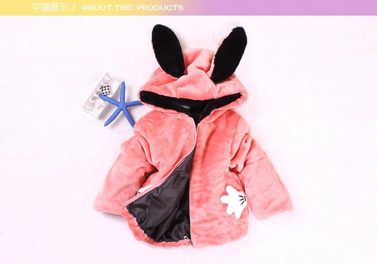 Rabbit_06