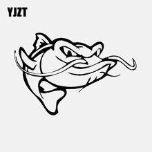 Download 46 Koleksi Gambar Ikan Lele Animasi HD Terpopuler