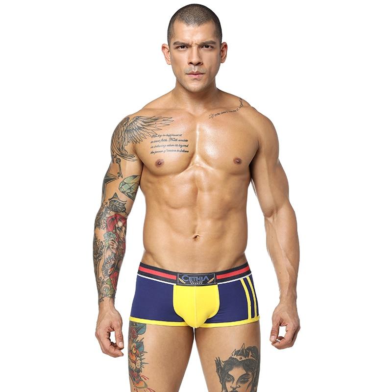 Brand Style Underwear men 95% Cotton 5% Modal Boxer Men Sexy Men Boxer Ventilate Plus Size Boxers Men gay underwear H65#25