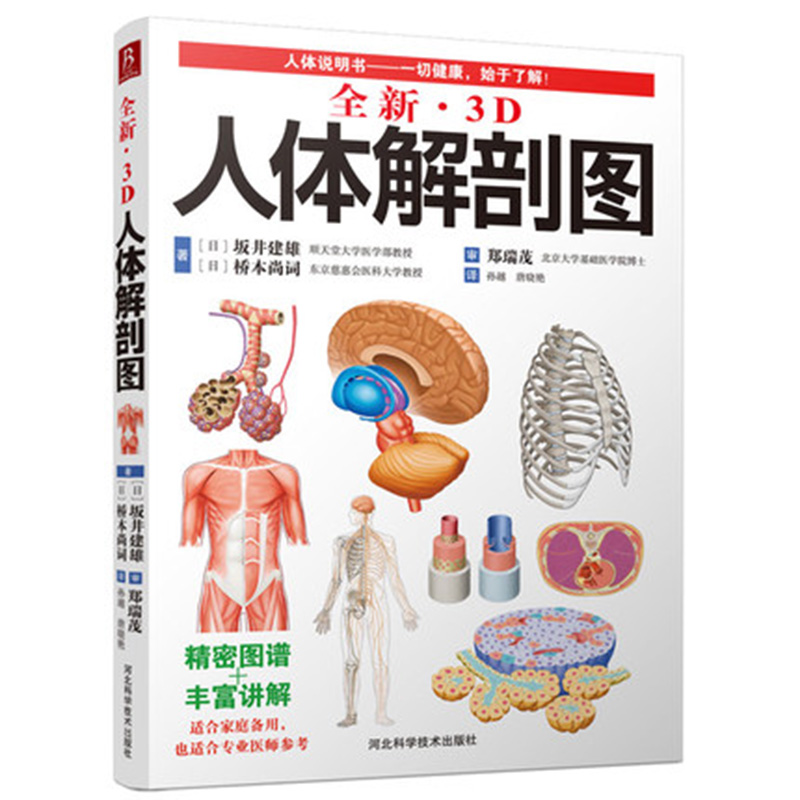 3D Human Anatomy Diagram Human Muscle Anatomy Movement Anatomy Tonic Partial Anatomy Textbook
