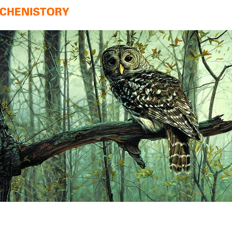 CHENISTORY Owl Animals Diy Digital Painting By Numbers Modern Abstract Canvas Painting Unique Gift For Home Decoration Artwork