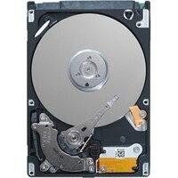 Seagate Desktop HDD 1TB SATA 3.5 7200rpm 64MB Hard Drive (Serial ATA III 1000GB 3.5 5.9W 0.63W 2A)