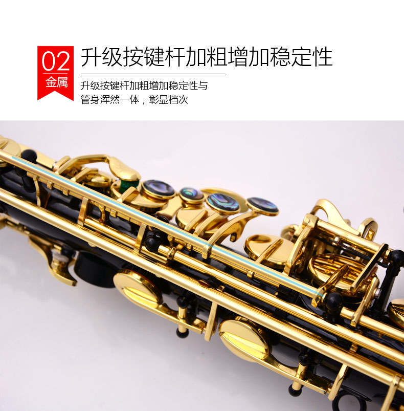 Brass Engraved Eb E Flat Alto Saxophone Sax Abalone Shell Buttons Wind Instrument with Case Gloves Cleaning Cloth Belt Brush - 2