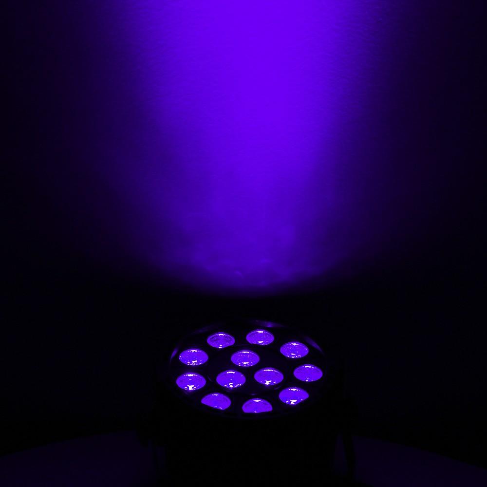 12 violet-1