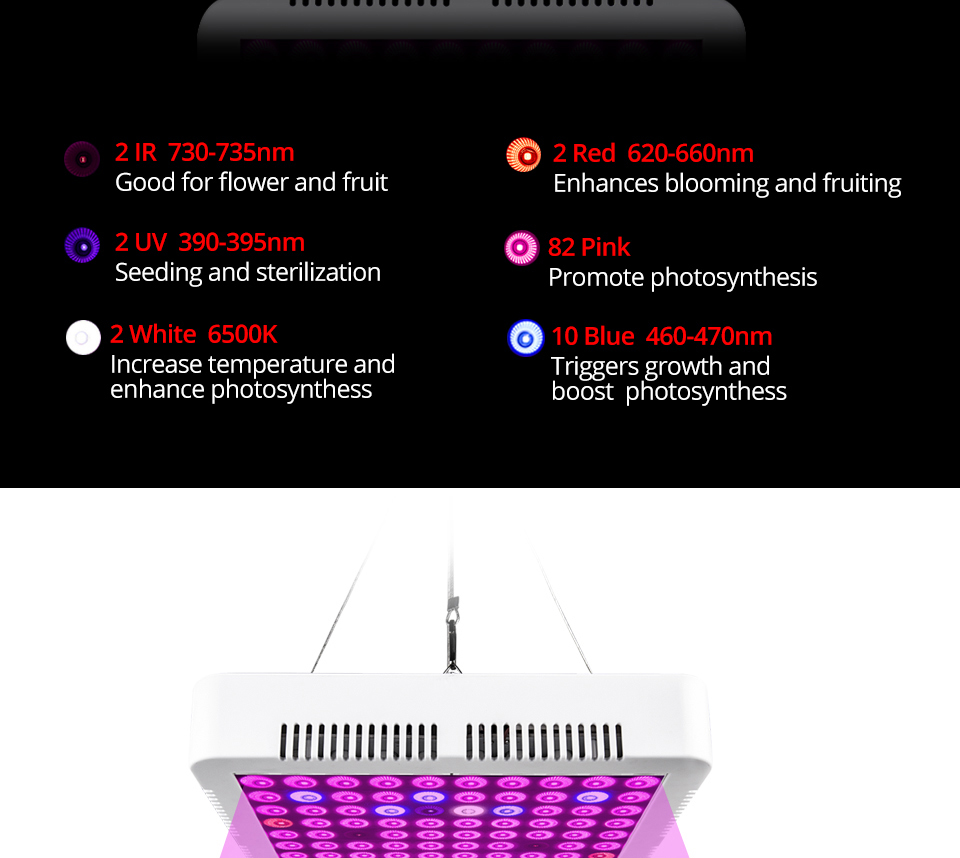300W Full Spectrum LED Plant Grow Light Lamp For Plant Indoor Nursery Flower Fruit Veg Hydroponics System Grow Tent Fitolampy (7)