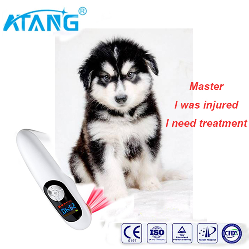 ATANG 2018 New Animal Post-ligation Pain Repair Laser Therapy Equipment Relief Wound Healing Sports Injury Animal Hurt Pains sports injury laser physical therapy body pain relief machine page 6