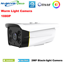 Warm light camera IP Camera 1080P HD Starlight full color video camera 1080P waterproof outdoor black light CCTV camera