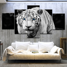 5Panel/piece The White Tiger blue eyes animal Print On Canvas Art Painting For home living room decoration