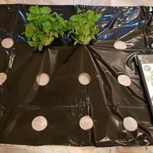 Película plástica para mantillo agrícola, película de cultivo de plantas vegetales, invernadero, mantener el calor, antihierba, película perforada de PE, color negro, 5 agujeros, 5 ~ 50m