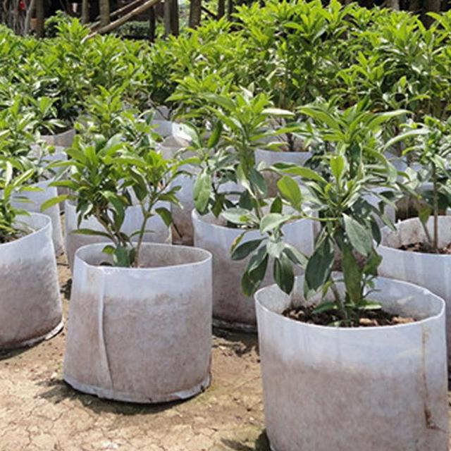 5 Size White Round Fabric Pots Plant Pouch Root Container Grow Bag Aeration Pot