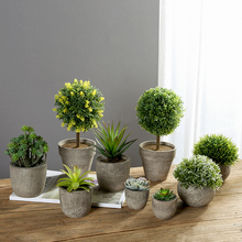 Erythrina mar mini vaso de plantas suculentas artificiais bonsai conjunto falso vaso de flores decorativas flor casa varanda decoração