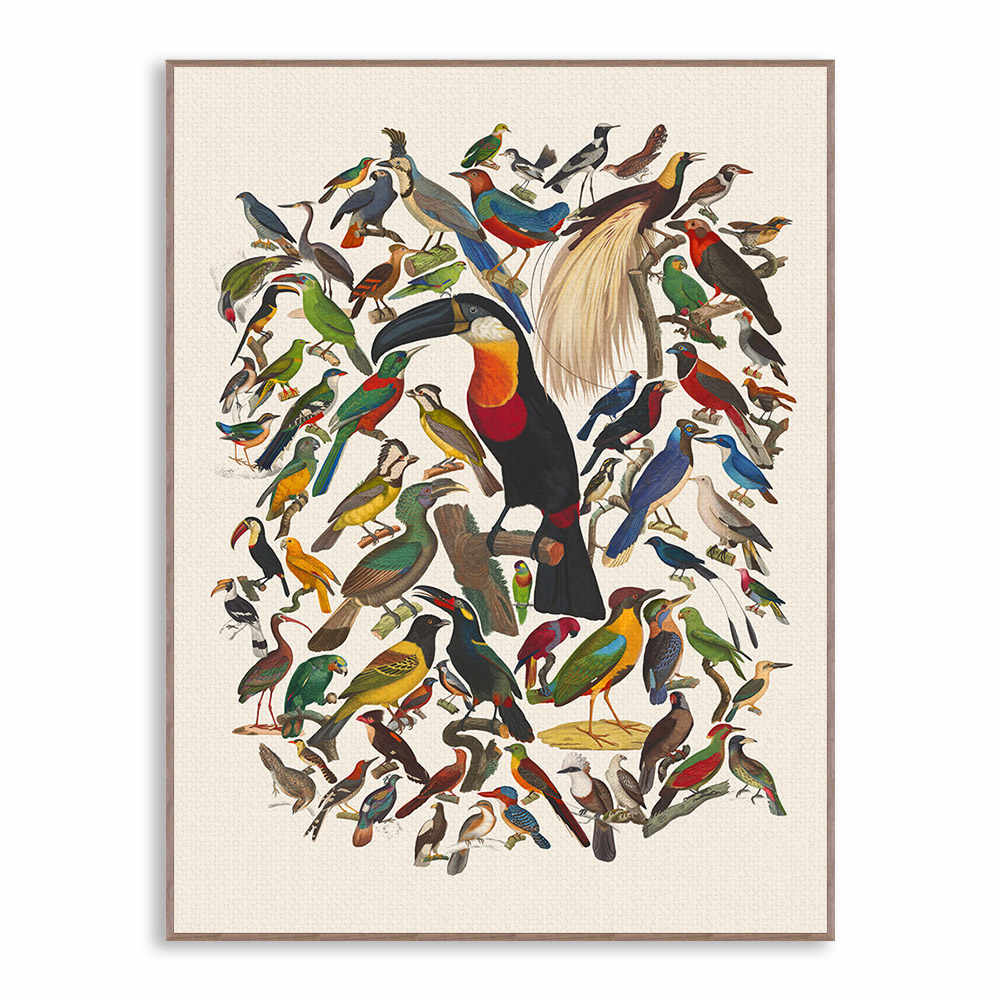 Triptych Vintage Retro Watercolor Birds Canvas Art Print Poster Large Animal Wall Picture Home Decor Painting No Frame