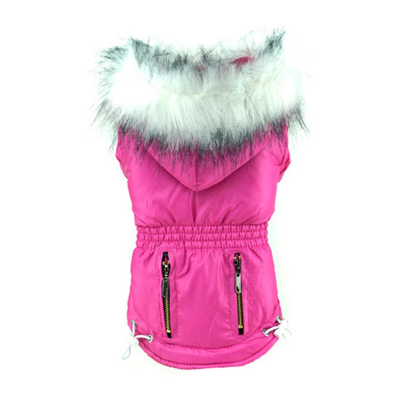 Dog clothes autumn and winter two feet dog coats thick dog clothes gold silver colors s xxl sizes super warm jackets for pet dog|Dog Coats & Jackets|   - title=