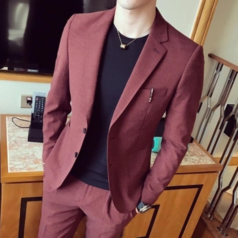 Spring men s suit suit men s fashion leisure pants pants Korean version of the small suit men s two - piece suit ...