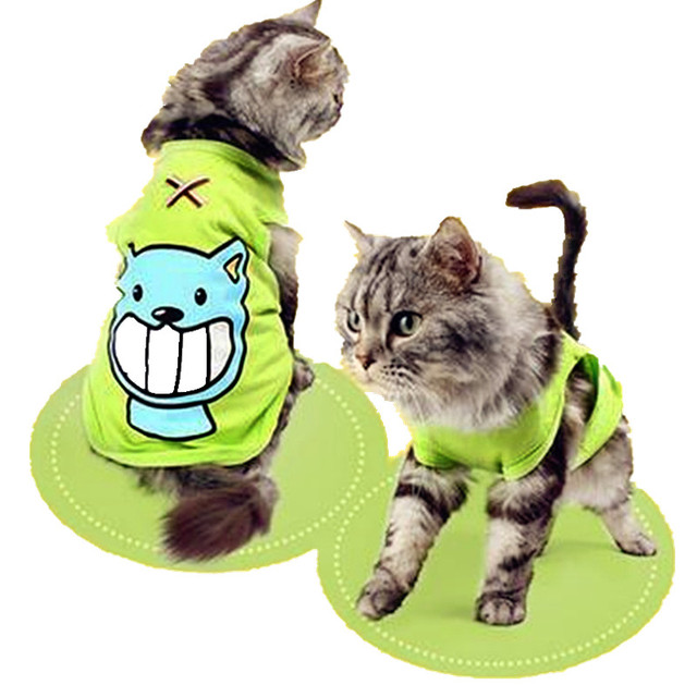 Summer Clothes for Cats