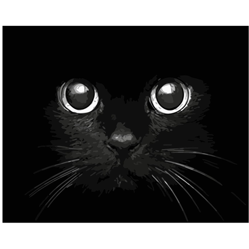Trend Product  Painting By Numbers DIY Dropshipping 40x50 50x65cm Blackcat evil terrifying Animal Canvas Wedding D