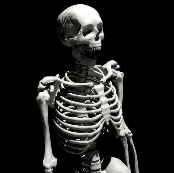 Yüksek Taklit Mini Kafatası Iskeletler Korkunç Cadılar Bayramı - Tatiller ve Partiler Için - Fotoğraf 1