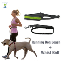 Hands Free Dog Leash Florescent Light Waist Bag For Running Walking Hiking Elastic Bungee Dog Leash