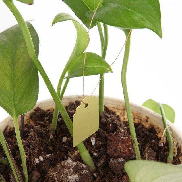 100Pcs/lot Plastic T-type Garden Plants Labels Waterproof Nursery Flower Pot Hanging Tags Marker for Garden Decoration