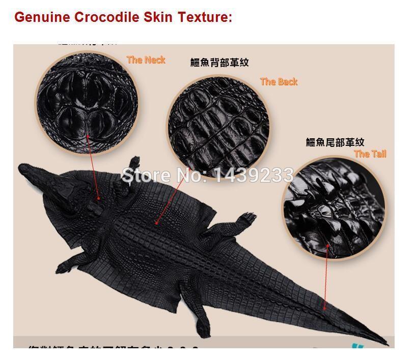 crocodile skin 3