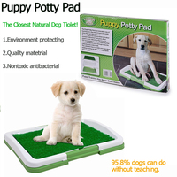 Pet Indoor Potty Trainer Dog Training Pad Puppy Cat Waste Poop Grass Mat Litter Boxes Pet Supplies Outdoor Patch Cleaning Toilet