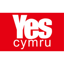 Free shipping 90*150cm 60*90cm Polyester YES Cymru Flag 3X5FT 90x150cm For Home Office Party Bar Banner