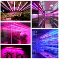 Blue Red Full Spectrum 6W Plant Light LED Grow Light 90-110V US Standard Plug Waterproof Inner Garden Gifts Light LED Grow Light