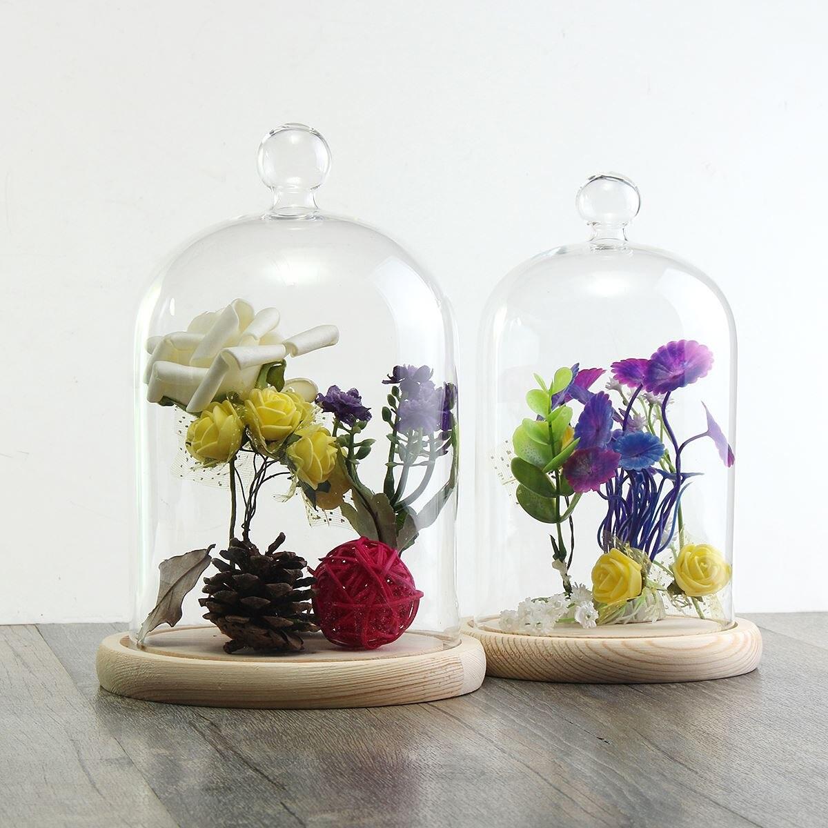forma de campana de cristal terrario florero con base de madera plantas hidropnicas macetas regalos