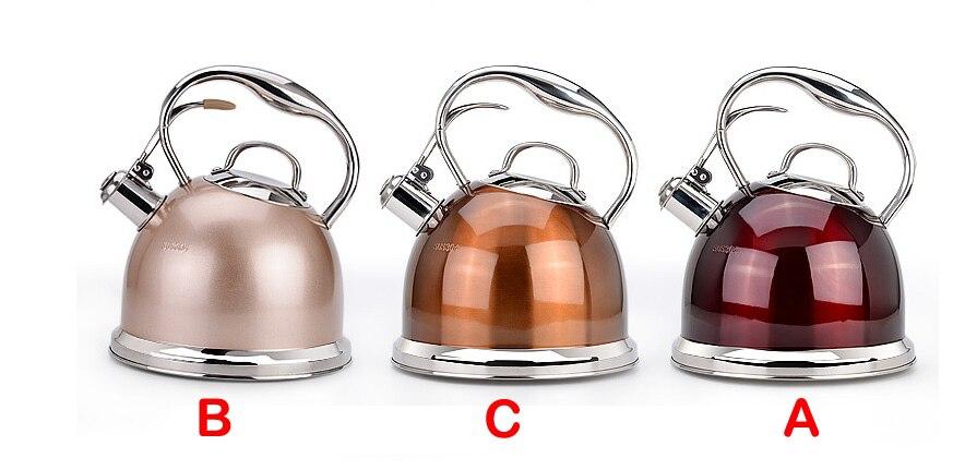 Accueil bouilloire gaz européen cuisinière à induction gaz universel inox bouteille d'eau 3L capacité