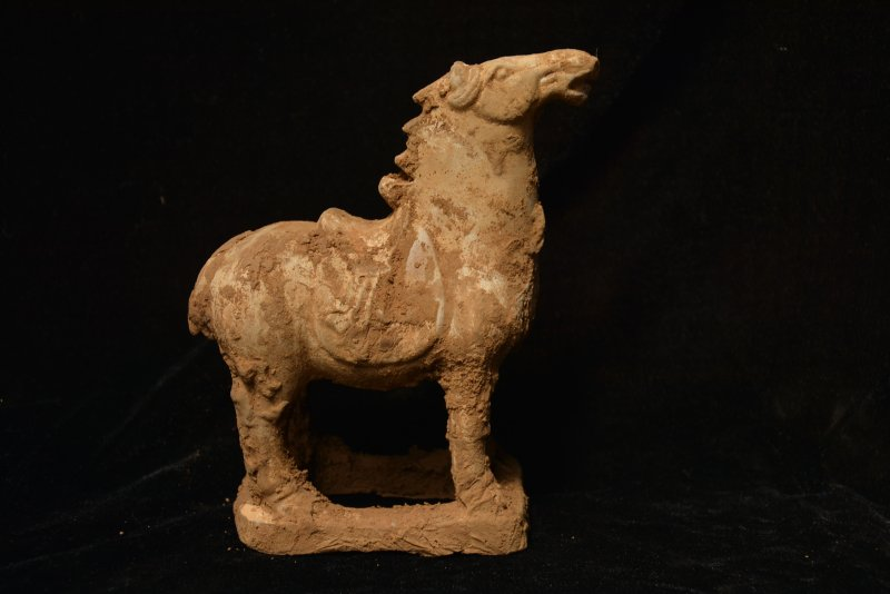 Collectable Tang Dynasty Chinese Pottery Horse ,Tang horse,#02,free shipping