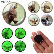 Donkey Fridge Magnet Glass 30MM Luminous Magnetic Sticker Interesting Animals Whiteboard Magnets for Refrigerator Home Decor