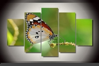 Modern Indoor Decor Original I4 Colorful butterflies print poster canvas in 5 pieces