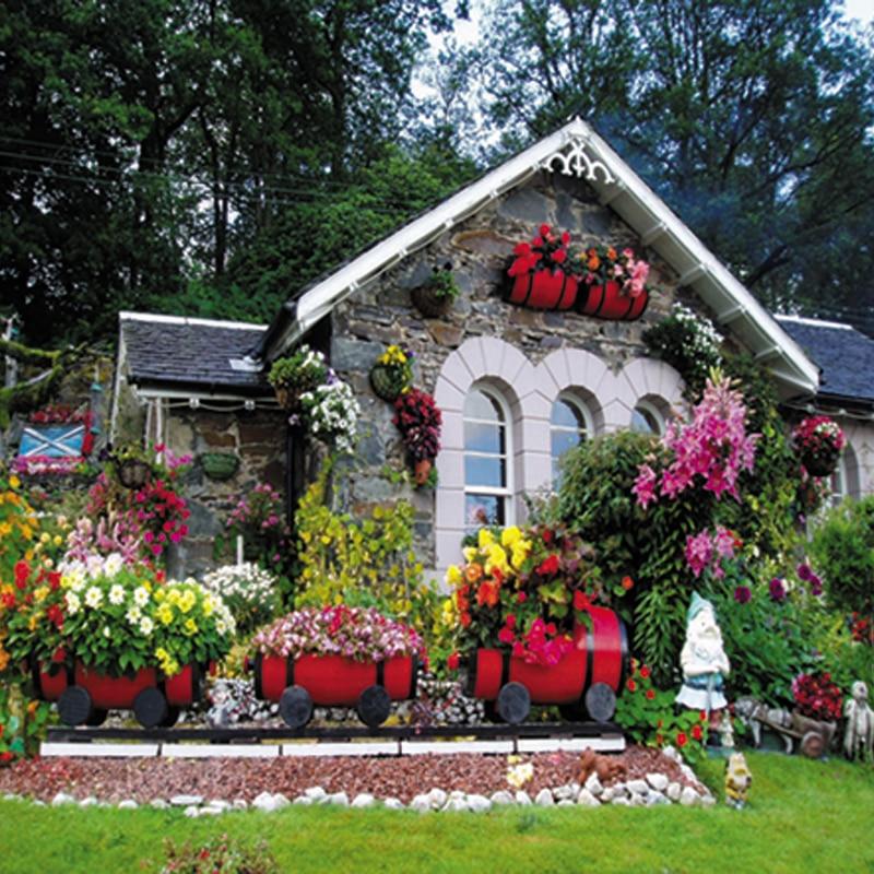 High Quality Photo Background Cloth Garden Cheap
