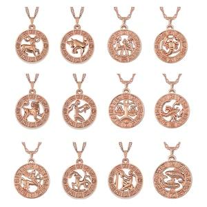 Astrolabe 12 Horoscope Zodiac Pendant Necklaces For Women Men Rose Gold Aries Leo Capricorn Gemini Constellations Jewelry Z4(China)
