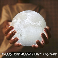 Full Moon Lamp Wood Rack LED Night Light USB Rechargeable Color Changing Desk Table Novelty Light