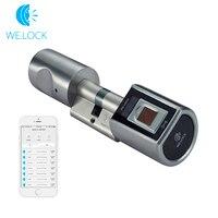 L6SBR биометрический сканер отпечатков пальцев Дверной замок Интеллектуальный отпечаток пальца дистанционное управление замок умный дом си