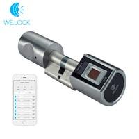 L6SBR биометрический сканер отпечатков пальцев Дверной замок умный отпечаток пальца пульт дистанционного управления замок умный дом система