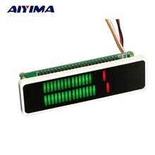 Aiyima Dual Estéreo 24 indicador de Nivel de Metro VU Modo AGC Velocidad Ajustable Tablero Del Amplificador Con El Caso