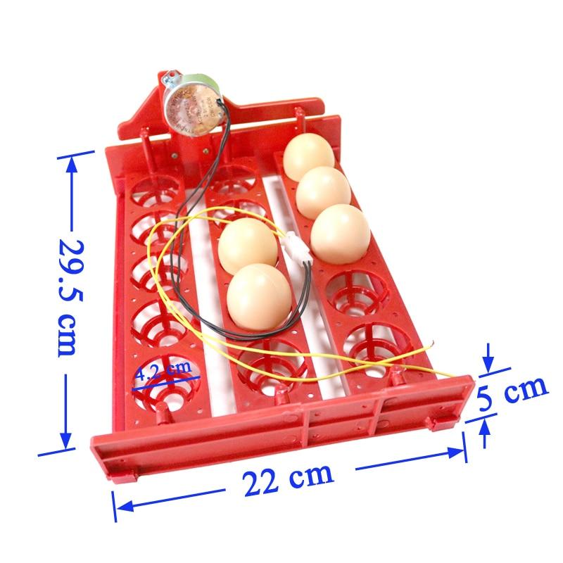 15 Incubator mini ouă Incintă automată pentru ouă Tava 220V / - Produse pentru animale de companie - Fotografie 2