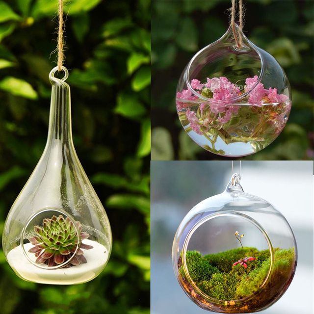 buy transparent wall hanging glass ball vase multi use flower hydroponic vase. Black Bedroom Furniture Sets. Home Design Ideas