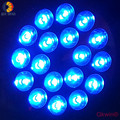 All Blue E27 par 38 Led grow light 54W with 18pcs 3W leds for grow stage in plant growing garden dropshipping