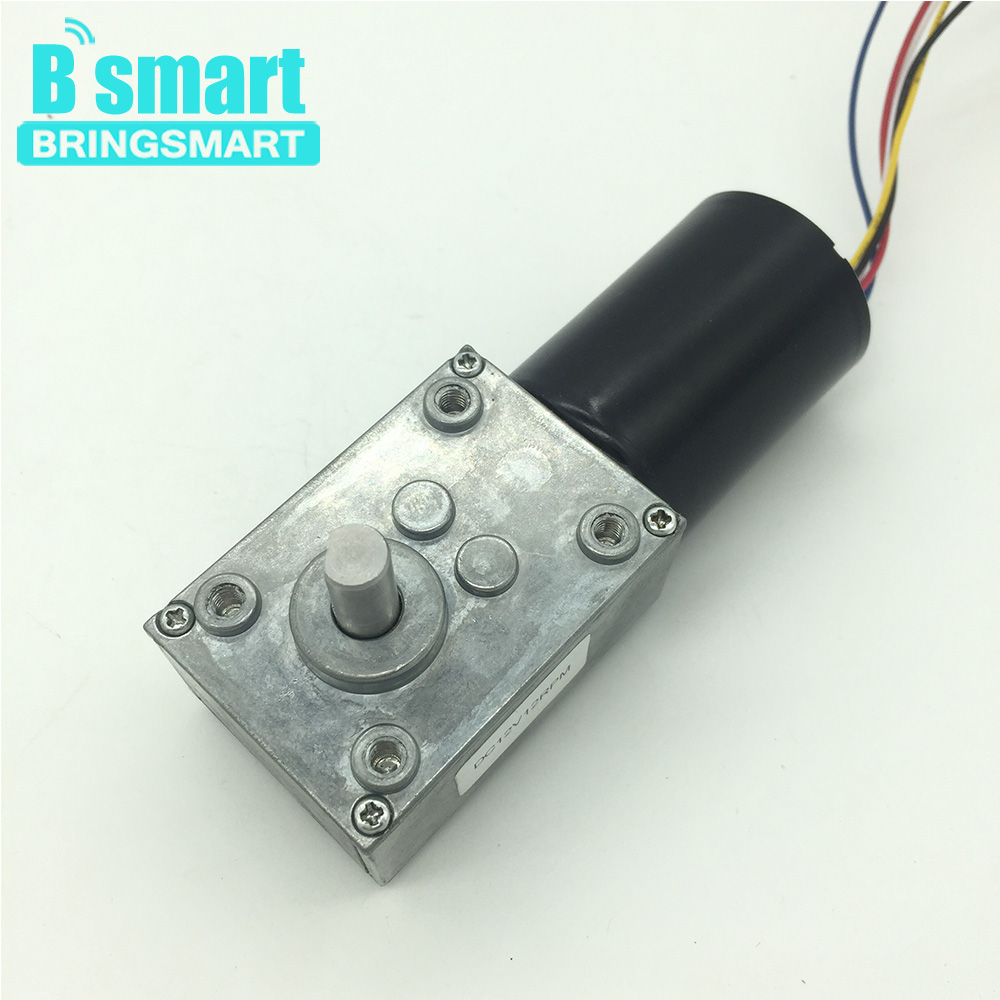 Bringsmart 5840-3650 Brushless DC Motor 12V Worm Gear Motor 24V Reversed Mini Electric Motor Self-lock Worm Reduction Gearbox bringsmart worm gear motor high torque 70kg cm 12v dc motor mini gearbox 24v motor reversed self lock engine diy parts a58sw31zy