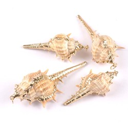 6 design mix Natural Shell Gold Plated for DIY handmade pendant SeaShells Home decoration 5pcs TRS0217