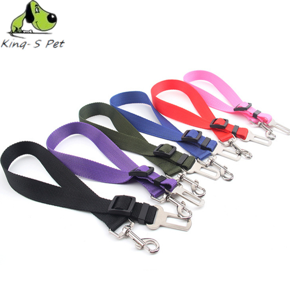 Safety Harness For Dogs Reviews