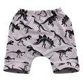 Bebé Dinosaurio Printting Shorts Niños Niños Niñas Pantalones Pantalones Niño Legging Sudor Harem Pantalón Corto 0-3Y