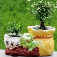 Ceramic Flower Pot for Succulent Plants gardening containers Flowerpot Micro-landscape Pot Garden Decoration Planter