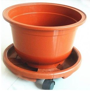 Flower Receptacle Tray Roller Wheels Moving Large Plant Pots With A Base Can Be Water In