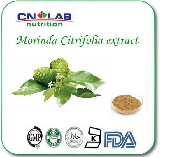 200g/lot best Quality Noni Fruit Powder 100% Natural Morinda Citrifolia Extract with best price