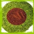 100% Pure Natural zenergreen супер Экстракт Зеленого Чая 300 г